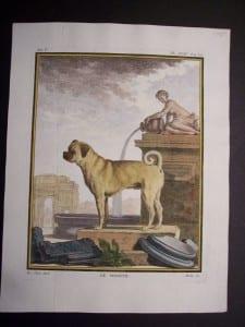 100_0376 Buffo Dog Engraving Le Doguin