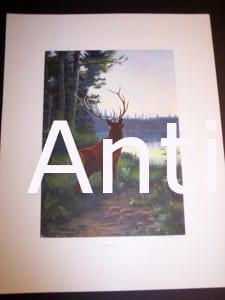 c.1900 American Photo-litho Elk