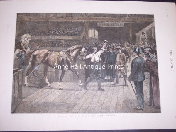 Detailed historic scene from the Graphic (19th century English Illustrated newspaper) of an auction of horses.