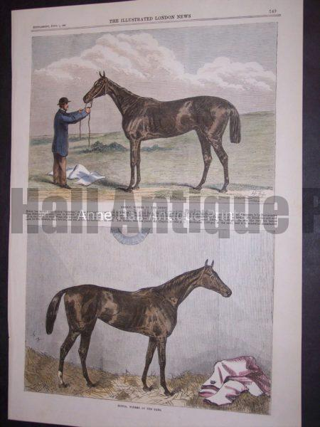 1867 engraving of thoroughbred racing horses, with groom.