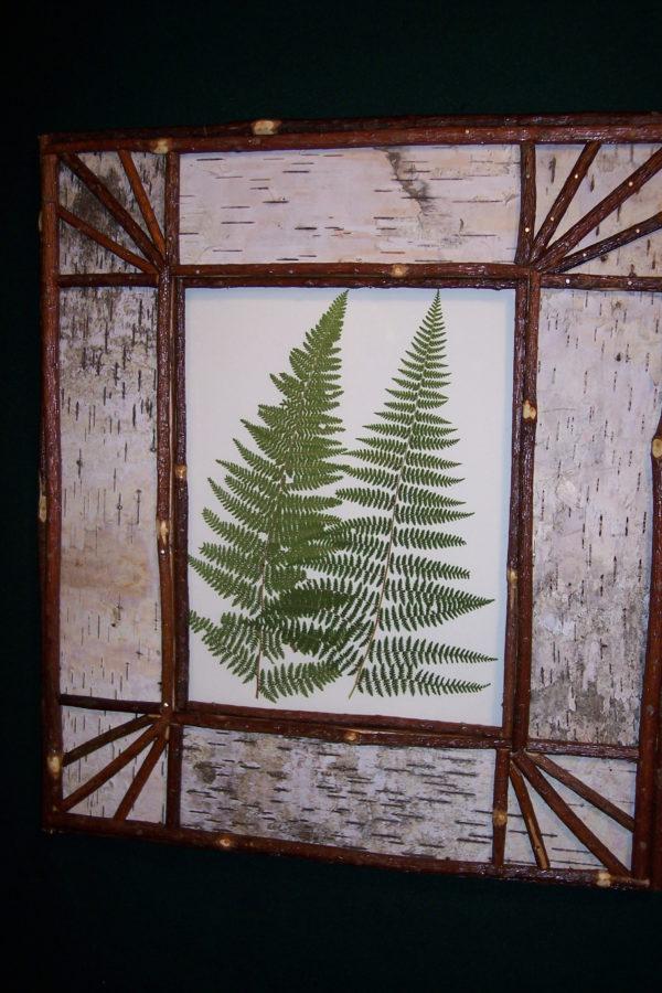Fern Speciman Adirondack Frame