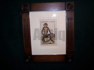 Buffon Monkey Hand colored engraving framed BFM1 $175.