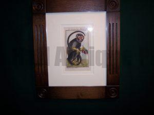 Buffon Monkey BFM6. Hand colored engraving framed.