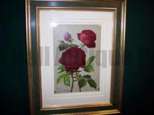old print of roses