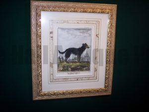 Buffon Dog Print 6182