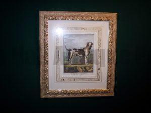 Buffon Dog Print Mastiff 6188