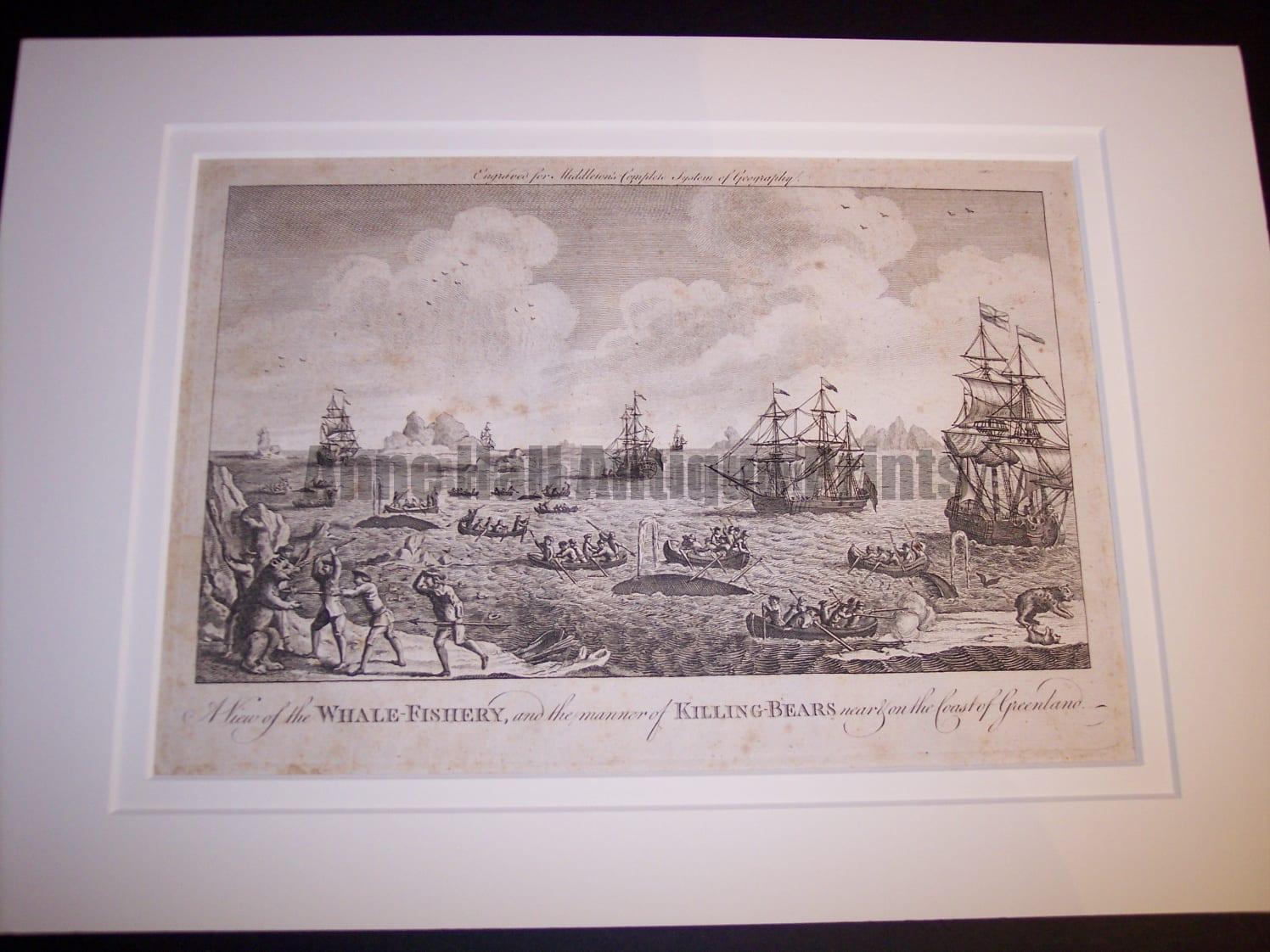 Whale Fishery, Rare Copper Engraving