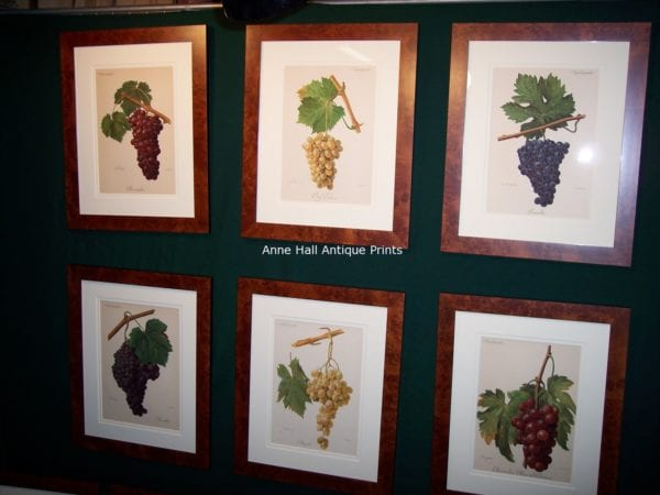 wine lithographs, framed.
