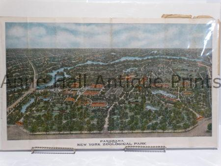 Spectacular large panoramic view of the New York Zoo. Perspective is from above. Colorful antique lithograph.