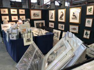 Antiques shows and other events for 2020.  Antique prints shopping at Anne Hall Antique Prints where exceptional customer design is online!