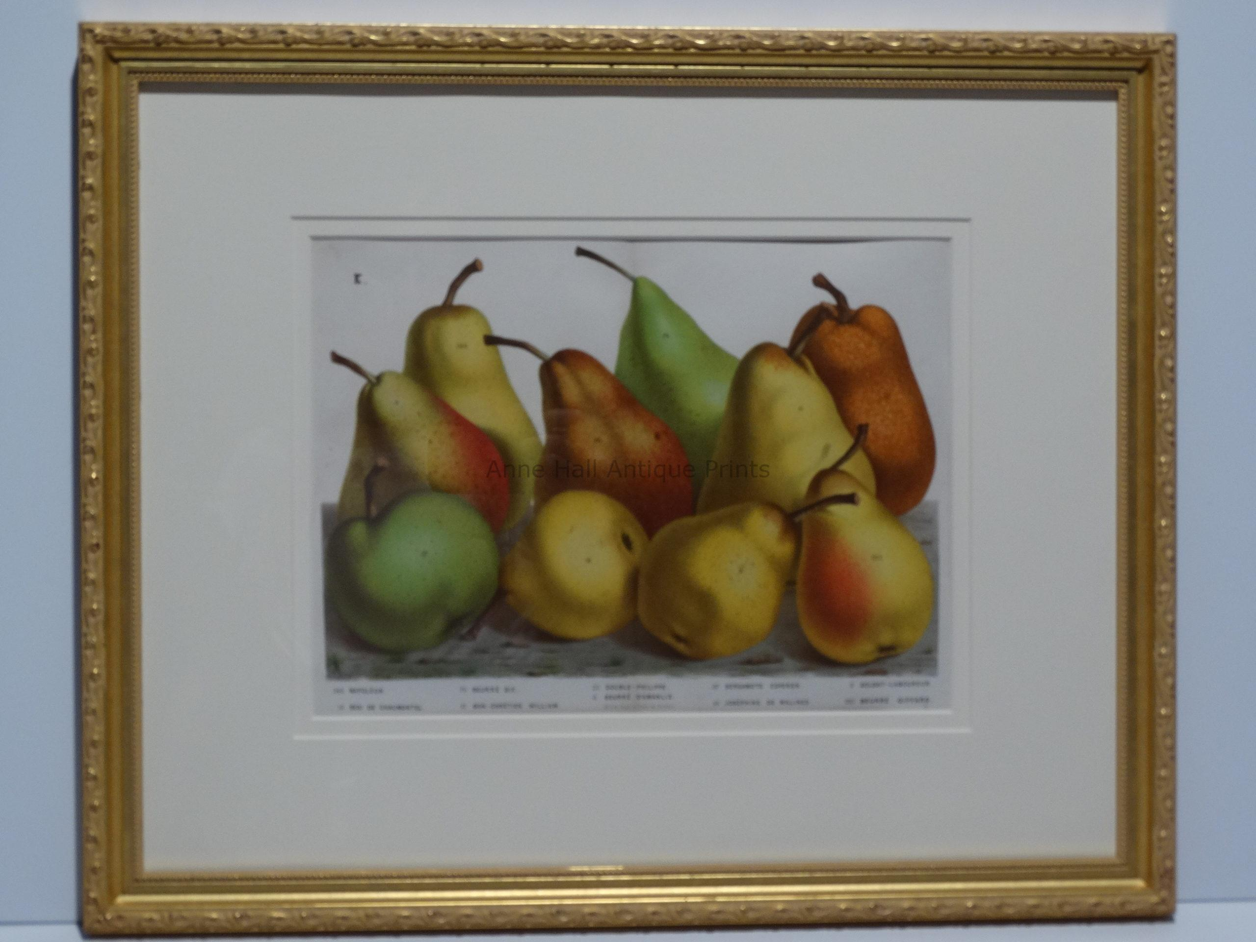 decorative wall hanging pears