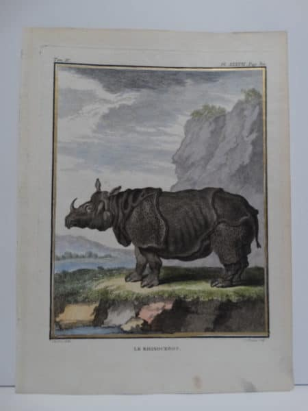 This antique print is a 18th century hand-colored engraving of a thick armoured rhinocerous with one horn.