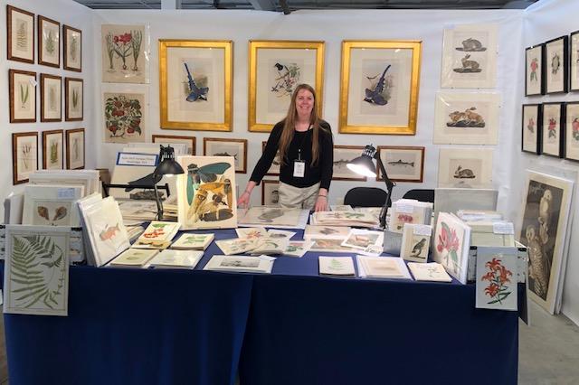 American antique prints dealer Anne Hall with her decorative & impressive display.