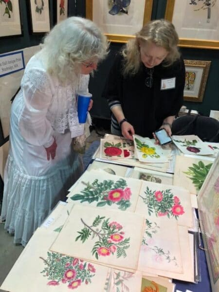 People love to see us in person at antique shows and other events. Rose growing competitors inspect rare botanical engravings.