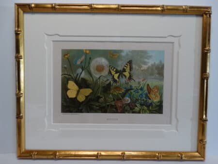 19th century colorful lithograph. Spectacular framing on the trio of antique prints.