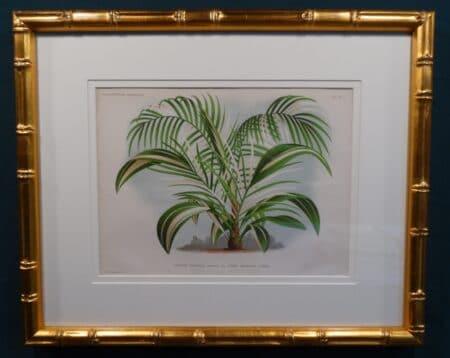 Florida home decorative art