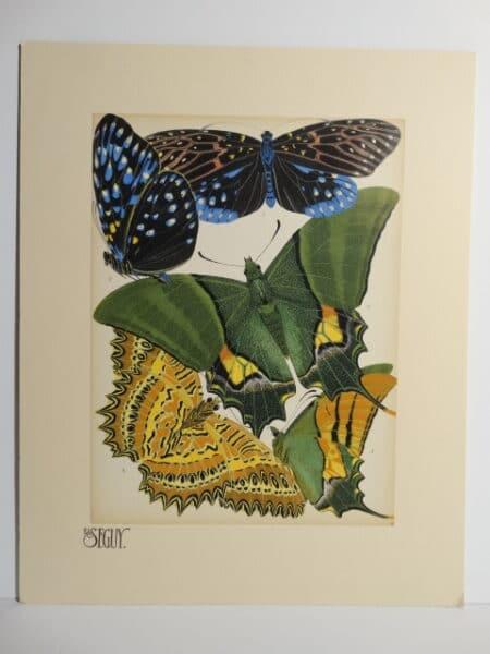Seguy Papillons Butterflies nostampgr
