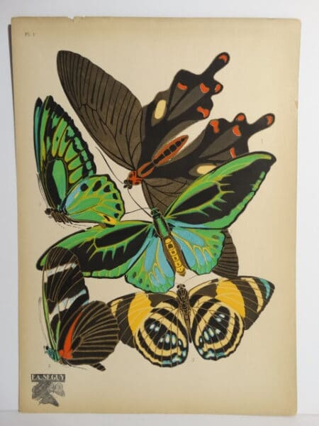 Seguy Papillons Butterfly PL1