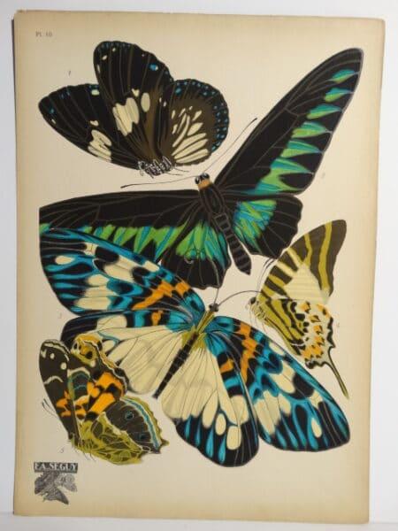 Seguy Papillons Pochoir PL10