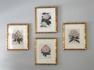 This stunning collection of four antique prints of white & pink azaleas rhododendrons are framed in gold leafed bamboo over red paint. Arranged in a diamond in a 6' wide space. Pale grey wall.
