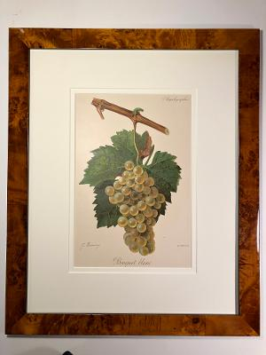Example of valuable decorative antique wine prints. This 120 year old lithograph has professional picture framing.