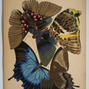 Original pochoir, EASeguy Papillons Plate-16, 1925. The Art Deco, butterfly compositions, have impacted the design industry, for decades.