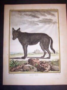 Animal Buffon Wolf 467  $125.