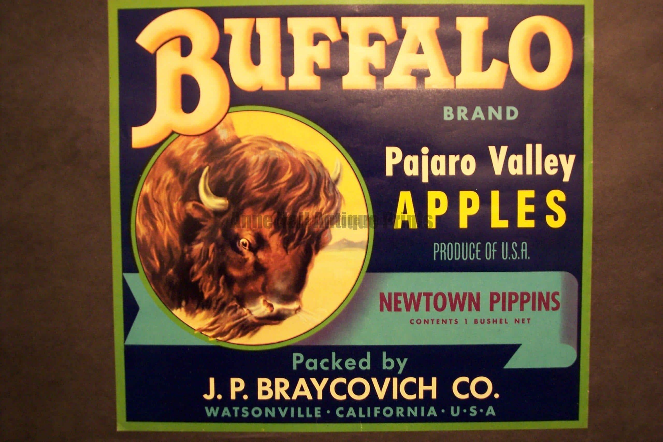 Buffalo Apples, c.1930. $30.