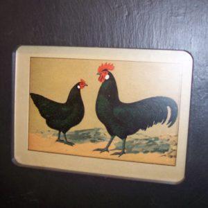 Chicken Chromolithograph Slate #3