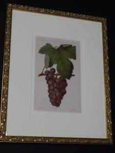 decorative wall art grapes