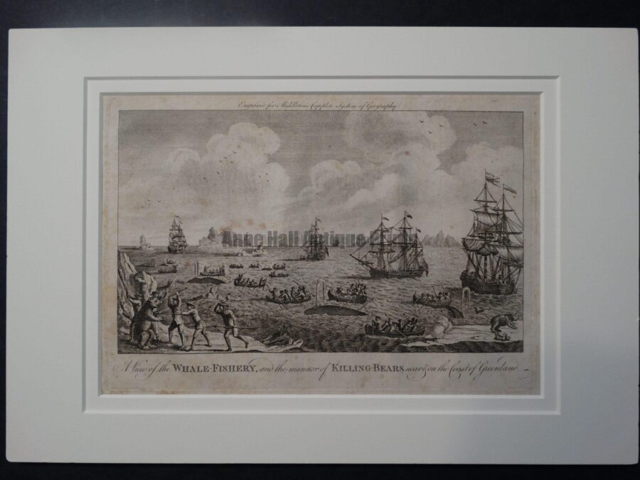Whale Fishery whaling ships, whaleboats, history, antique engraving of active hunt.