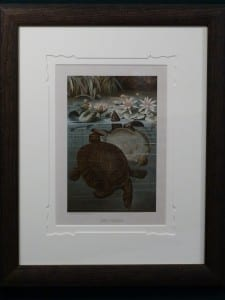 Soft Turtles Framed. 1885. $225.