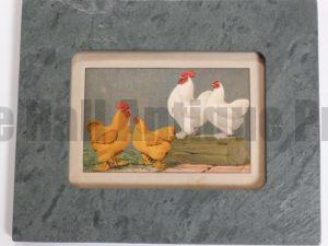 Chickens Green Slate #1