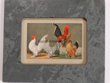 Chickens in Green Slate #2