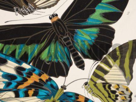 Art Deco Butterflies
