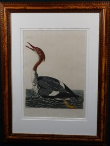 Pennant, Dun Diver. Fabulous rare hand colored copper plate engraving by Thomas Pennant c.1776.