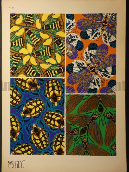 Eugene Seguy Insectes Pochoir Pattern 20