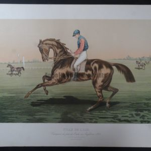 Fille-De-L'air Horse