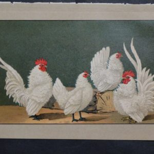 Kramer Poultry Chromolithograph 32