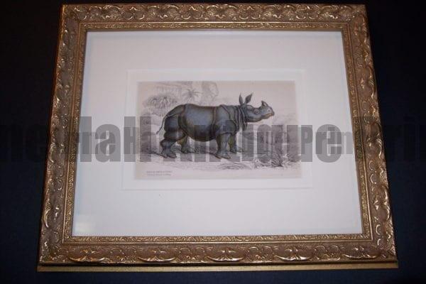 Lizar Indian Rhino Framed