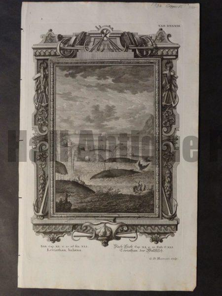 Scarce and rare copper plate engraving of entire whaling scene.