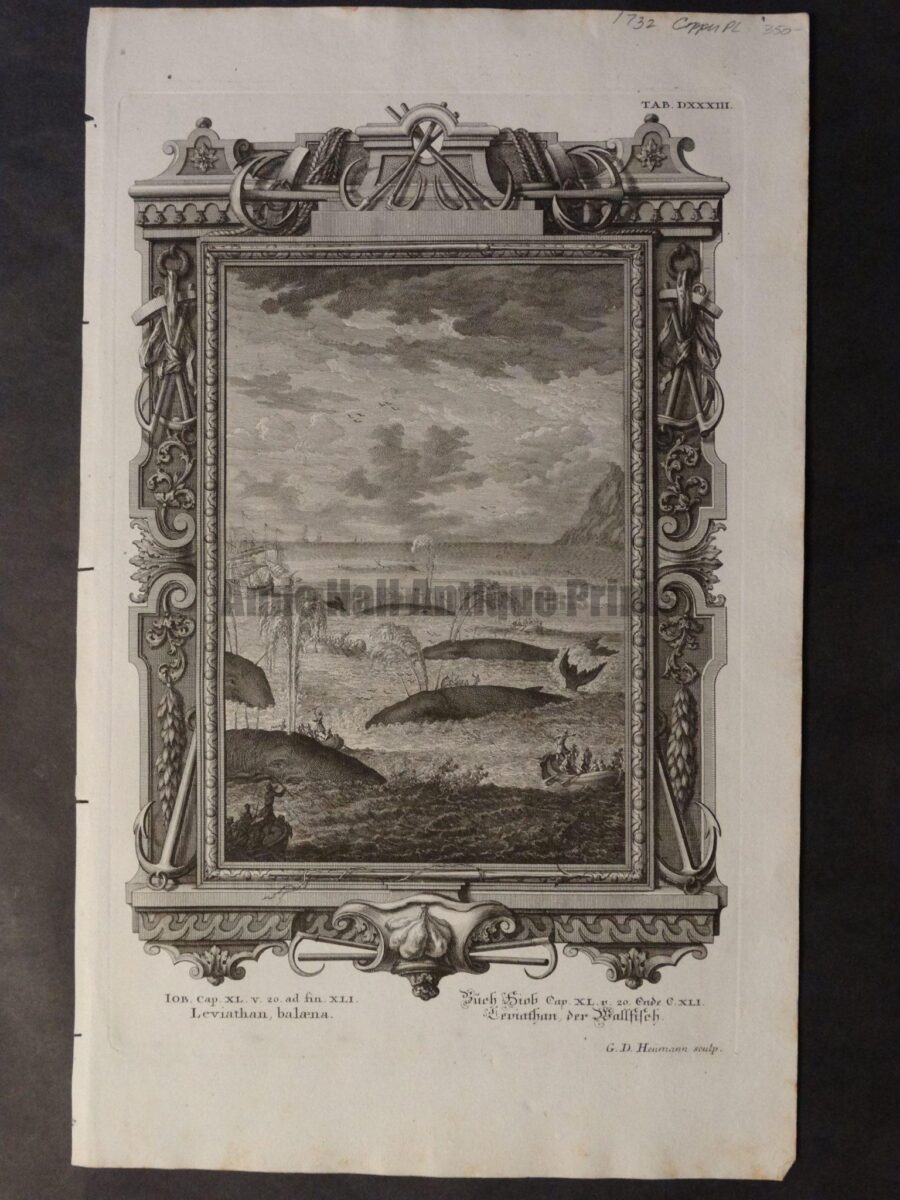Scarce and rare copper plate engraving of active whaling scene.