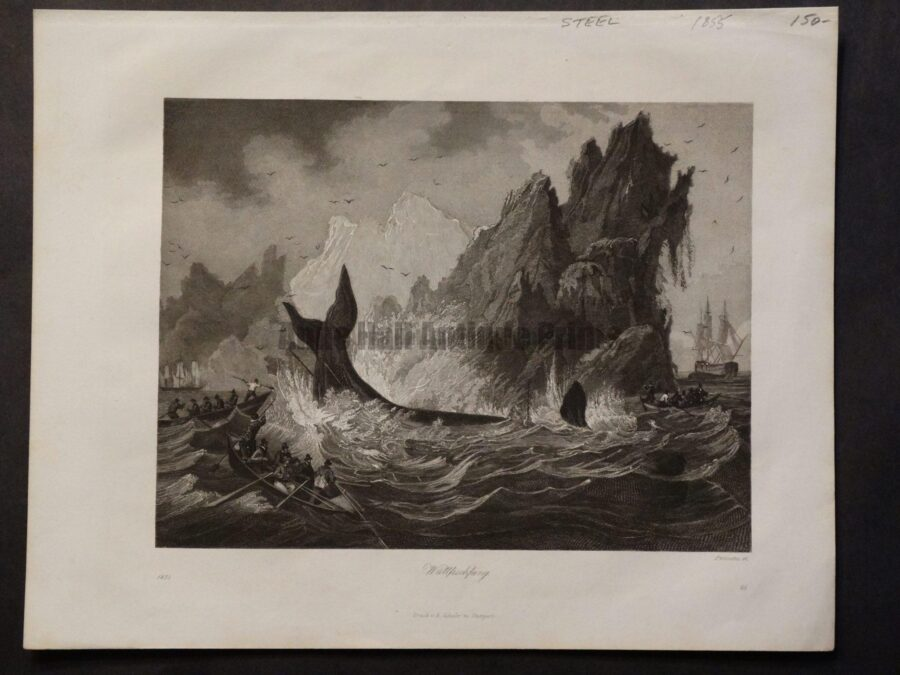 A historic whaling scene depicting whaleboats hunting a huge whale in dangerous waters.