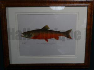The Canadian Red Trout $285