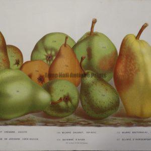 original artwork pears