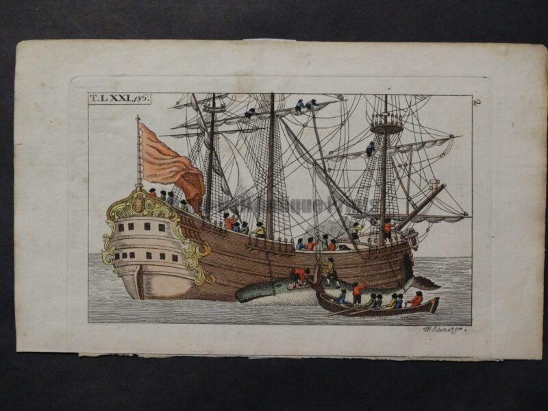 19th century engravings of whaling ships and whaleboats with oarsmen.