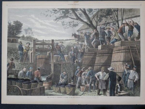Pressing wine